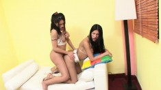 Pretty brunette shemales Paola and Zafiro feed their lust for anal sex