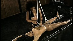 The slave has her hands tied and weights hanging from her nipples