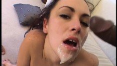 A lucky slut gets to enjoy the taste of both white and black meat
